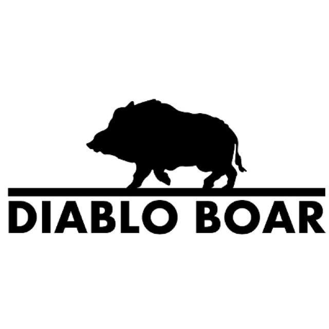 Diablo Boar